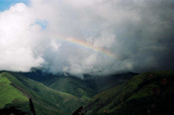 Yungas Scenery